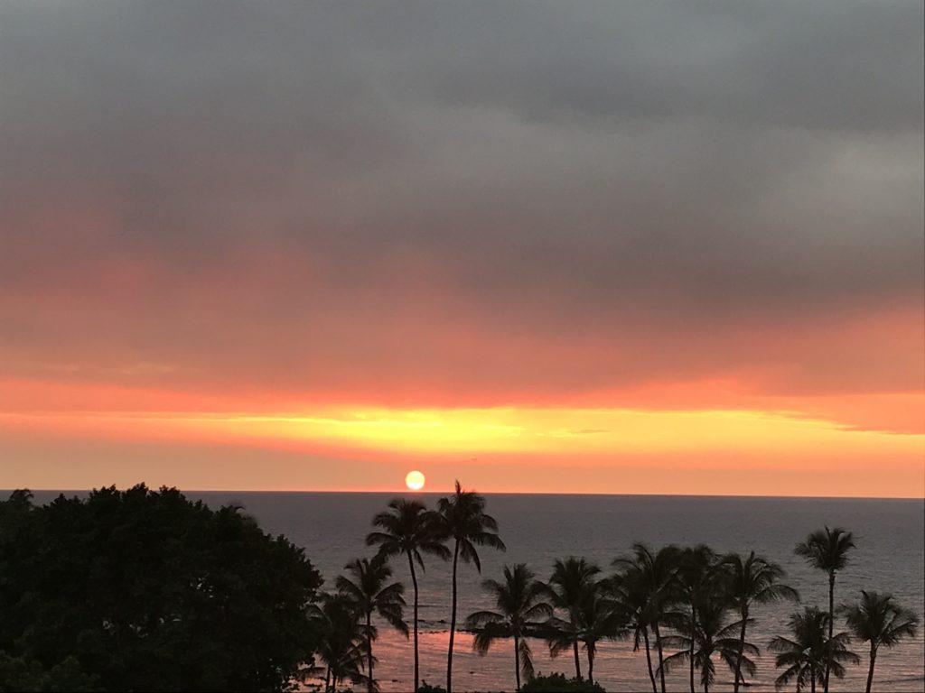 ハワイが気になる