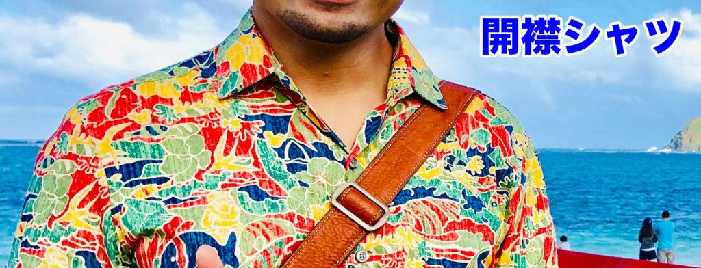 ああ、夏のアロハシャツ